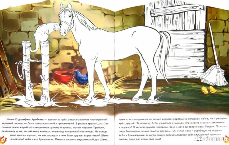 Иллюстрация 1 из 8 для Лошади великих людей - группа Авторская | Лабиринт - книги. Источник: Лабиринт