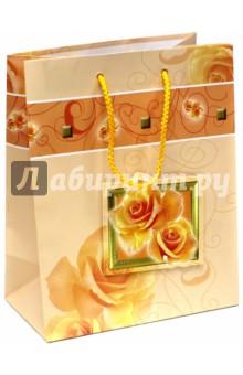 Пакет подарочный ламинированный, 180х227х100, ассортимент (M-3D-026)