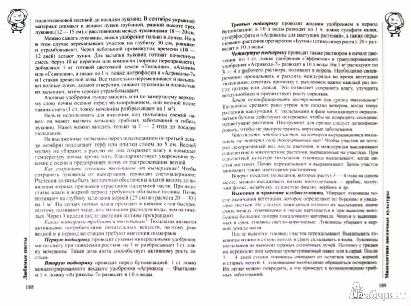 Иллюстрация 1 из 36 для 1200 вопросов и ответов. Все о саде и огороде - Ганичкина, Ганичкин | Лабиринт - книги. Источник: Лабиринт
