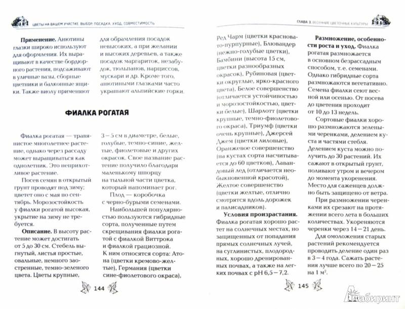 Иллюстрация 1 из 8 для Цветы на вашем участке - Елена Вечерина | Лабиринт - книги. Источник: Лабиринт