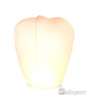 Иллюстрация 1 из 2 для Шар желаний белый (диаметр - 49 см) (ПУБО) | Лабиринт - сувениры. Источник: Лабиринт