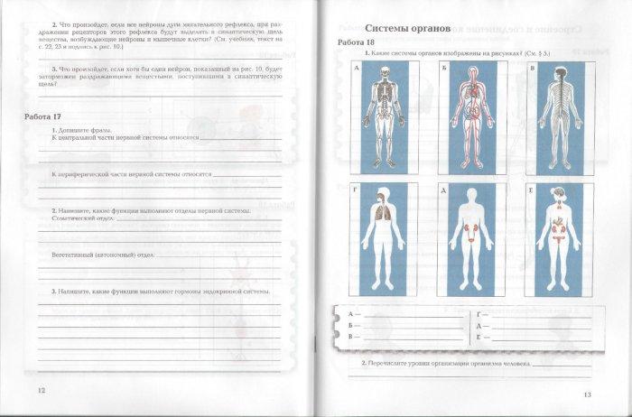 Иллюстрация 1 из 6 для Биология: 8 класс: Рабочая тетрадь № 1 для учащихся общеобразовательных учреждений - Маш, Драгомилов | Лабиринт - книги. Источник: Лабиринт