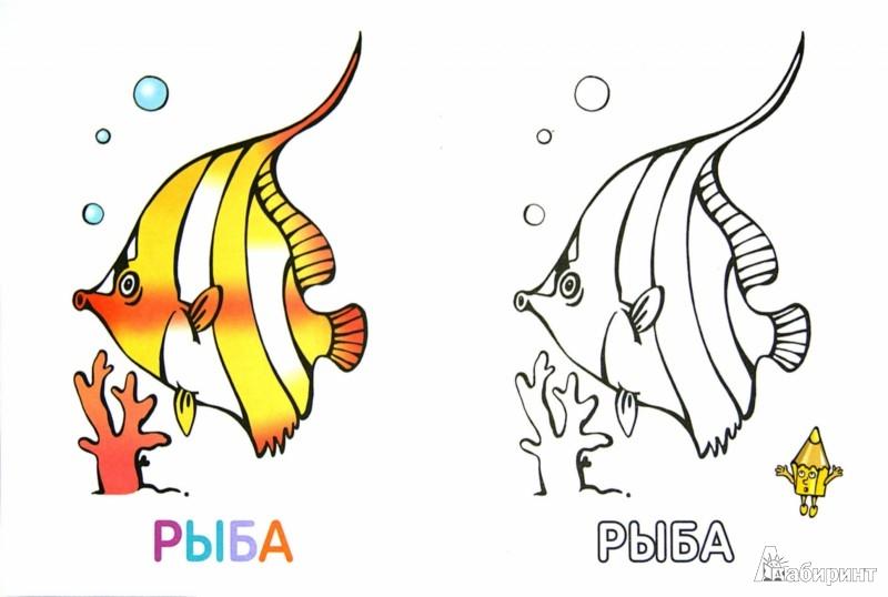 Иллюстрация 1 из 6 для Раскраска для малышей. Морские жители | Лабиринт - книги. Источник: Лабиринт