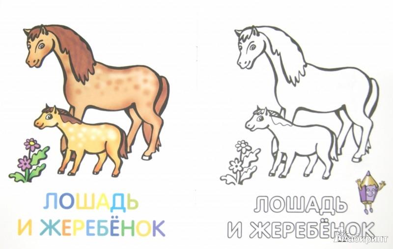 Иллюстрация 1 из 28 для Раскраска для малышей. Родители и детки. Тигрята   Лабиринт - книги. Источник: Лабиринт