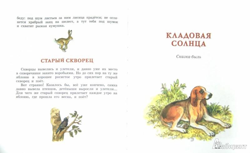 Иллюстрация 1 из 53 для Лисичкин хлеб - Михаил Пришвин | Лабиринт - книги. Источник: Лабиринт
