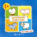 Домашние животные! Детям от 1-го года