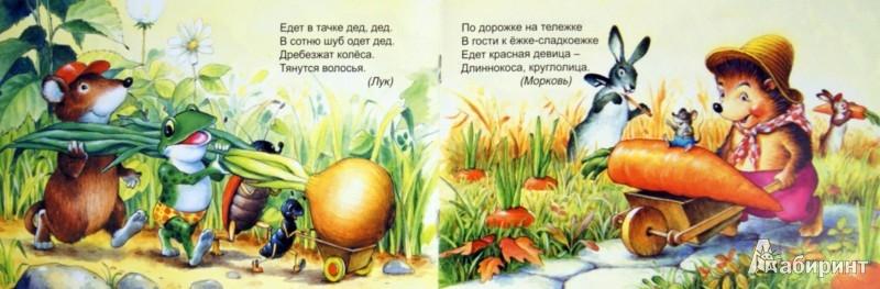 Иллюстрация 1 из 24 для Загадки с грядки - Бурдин, Кумча | Лабиринт - книги. Источник: Лабиринт