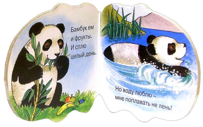 Иллюстрация 1 из 6 для Панда. Книжка в кармашек - Алла Сорокина | Лабиринт - книги. Источник: Лабиринт