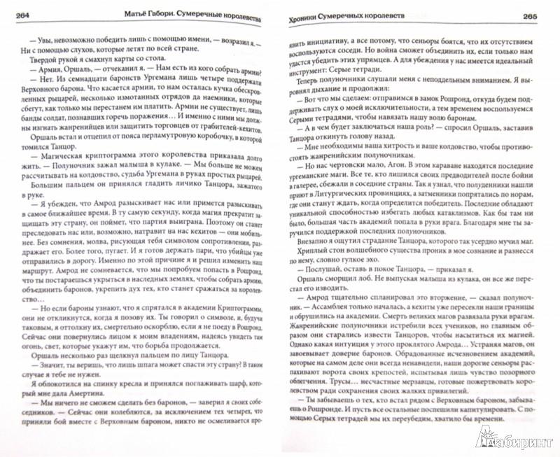 Иллюстрация 1 из 9 для Сумеречные королевства: Хроники Сумеречных королевств. Абим - Матье Габори | Лабиринт - книги. Источник: Лабиринт