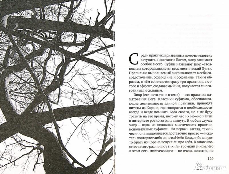 Иллюстрация 1 из 6 для За завесами света. Эзотерический суфизм - Руслан Жуковец | Лабиринт - книги. Источник: Лабиринт