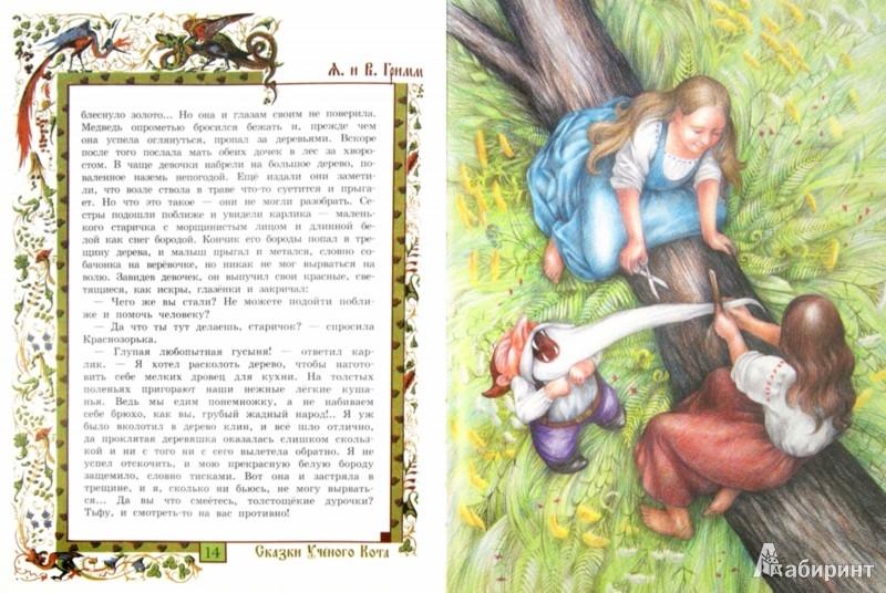 Иллюстрация 1 из 17 для Белоснежка и Краснозорька. Три брата - Гримм Якоб и Вильгельм | Лабиринт - книги. Источник: Лабиринт