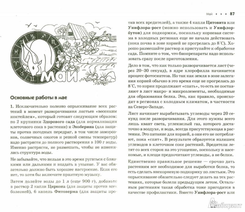 Иллюстрация 1 из 4 для Дачный лунный календарь на 2015 год - Галина Кизима | Лабиринт - книги. Источник: Лабиринт