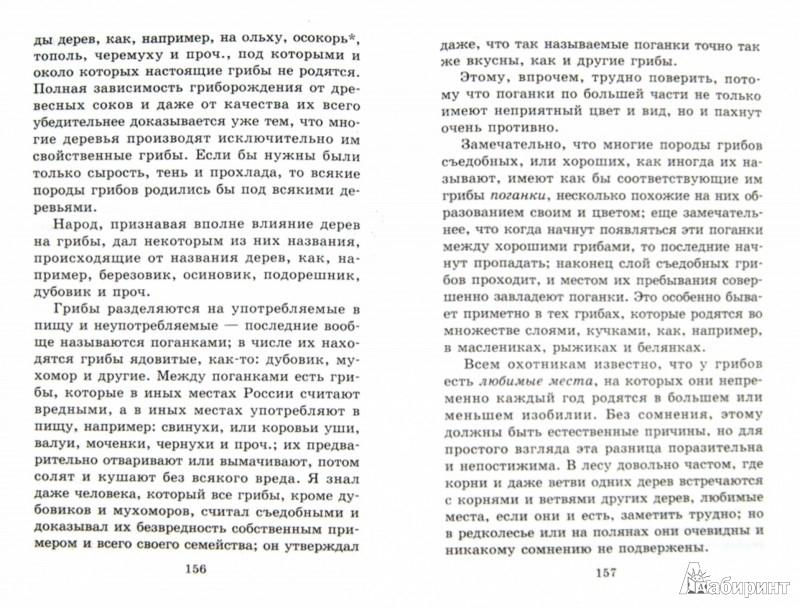 Иллюстрация 1 из 28 для Рассказы о природе - Сергей Аксаков | Лабиринт - книги. Источник: Лабиринт