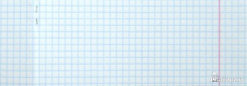 """Иллюстрация 1 из 2 для Тетрадь общая """"Животный мир"""" (48 листов, клетка, в ассортименте) (29611)   Лабиринт - канцтовы. Источник: Лабиринт"""