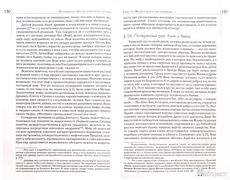 Иллюстрация 1 из 24 для История веры и религиозных идей: от каменного века - Мирча Элиаде | Лабиринт - книги. Источник: Лабиринт