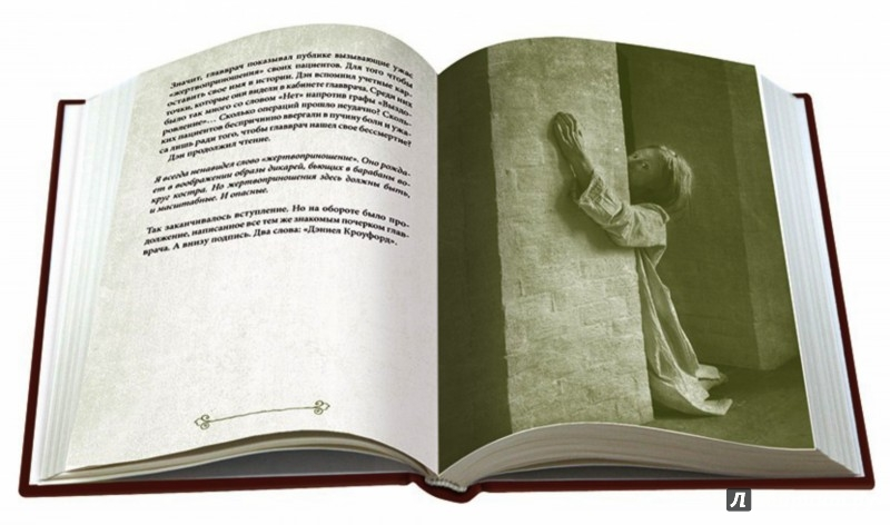 Иллюстрация 1 из 31 для Приют - Мэделин Ру | Лабиринт - книги. Источник: Лабиринт