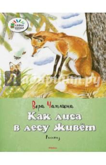 Как лиса в лесу живёт