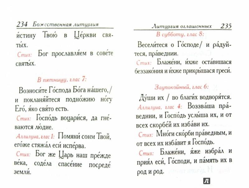 Иллюстрация 1 из 8 для Всенощное бдение, часы, Божественная литургия   Лабиринт - книги. Источник: Лабиринт