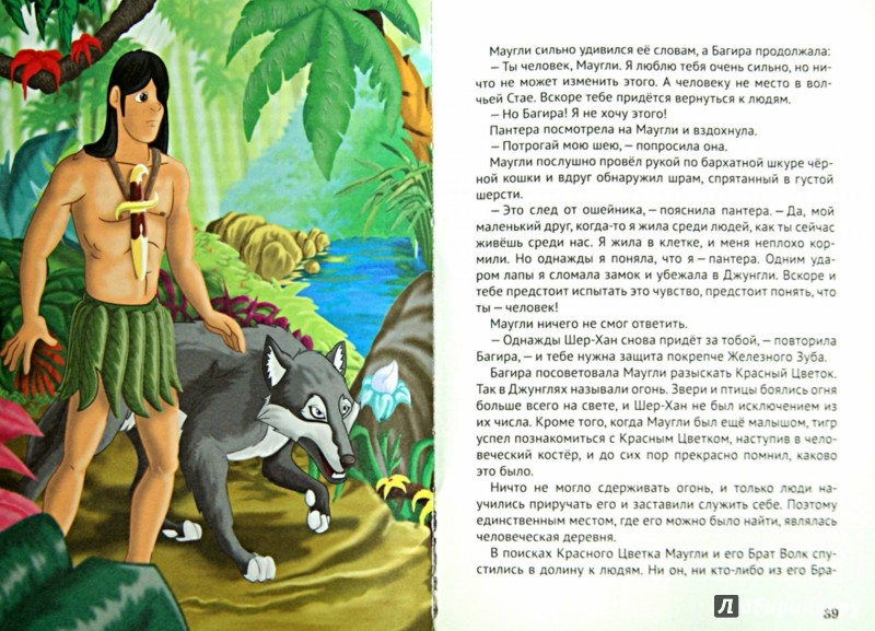 Иллюстрация 1 из 10 для Сказки из чудесной страны | Лабиринт - книги. Источник: Лабиринт
