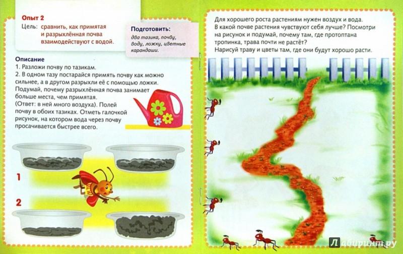 Иллюстрация 1 из 24 для Простые опыты с природными материалами - Марина Султанова   Лабиринт - книги. Источник: Лабиринт