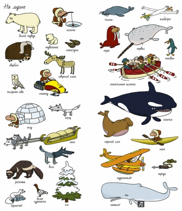 Иллюстрация 1 из 48 для Вокруг света. Найди и покажи - Тьерри Лаваль | Лабиринт - книги. Источник: Лабиринт