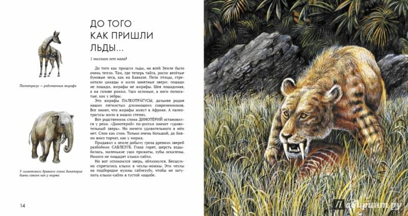 Иллюстрация 1 из 64 для Палеонтология в картинках - Ирина Яковлева | Лабиринт - книги. Источник: Лабиринт