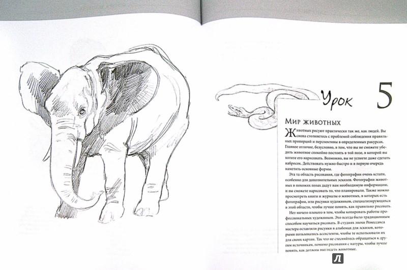 Иллюстрация 1 из 14 для Секреты мастера. 7 простых уроков рисования - Баррингтон Барбер   Лабиринт - книги. Источник: Лабиринт
