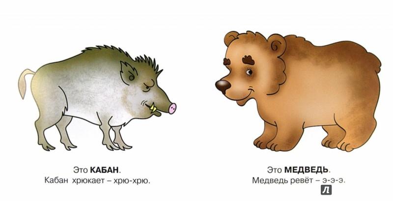 Иллюстрация 1 из 15 для Дикие животные! 1+ - Ольга Громова | Лабиринт - книги. Источник: Лабиринт