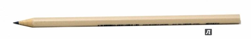 Иллюстрация 1 из 7 для Карандаш чернографитовый Wopex HB, цвет корпуса - светлая шампань (180HB-C1CL) | Лабиринт - канцтовы. Источник: Лабиринт