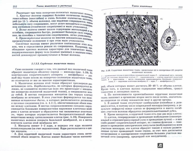 Иллюстрация 1 из 37 для Общая биология. Пособие для поступающих - Александр Чуйкин   Лабиринт - книги. Источник: Лабиринт