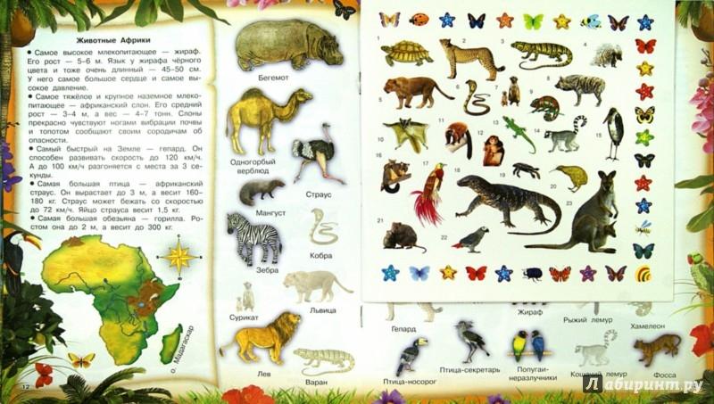 Иллюстрация 1 из 5 для 400 наклеек. Первая книжка маленьких почемучек | Лабиринт - книги. Источник: Лабиринт