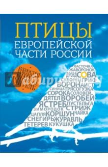 Птицы европейской части России сувениры рнтойс гнездо с яйцами