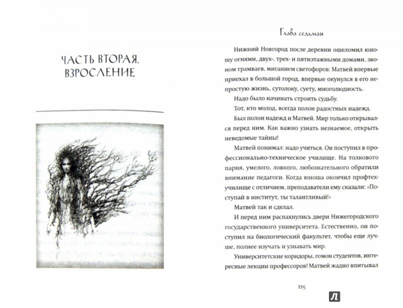 Иллюстрация 1 из 15 для Колдун - Роман Фад | Лабиринт - книги. Источник: Лабиринт