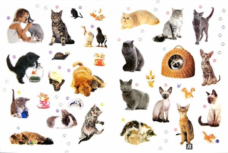 Иллюстрация 1 из 29 для Мои друзья - кошки. Энциклопедия животных с наклейками   Лабиринт - книги. Источник: Лабиринт