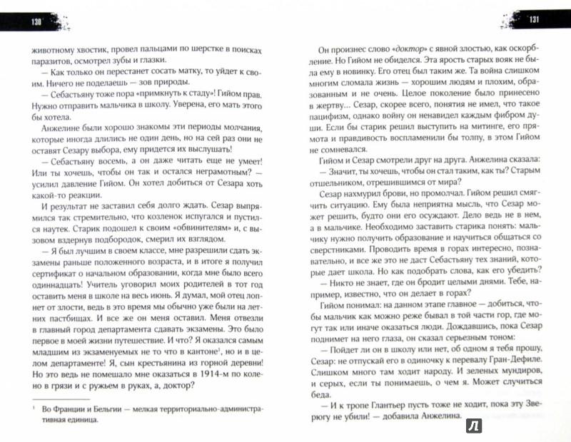 Иллюстрация 1 из 25 для Белль и Себастьян - Николя Ванье | Лабиринт - книги. Источник: Лабиринт