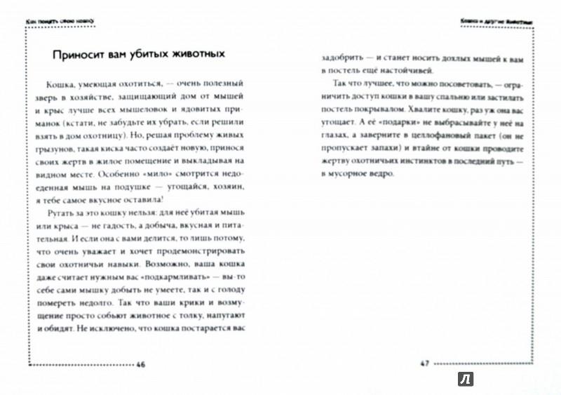 Иллюстрация 1 из 34 для Как понять свою кошку - Наталья Дьякова | Лабиринт - книги. Источник: Лабиринт