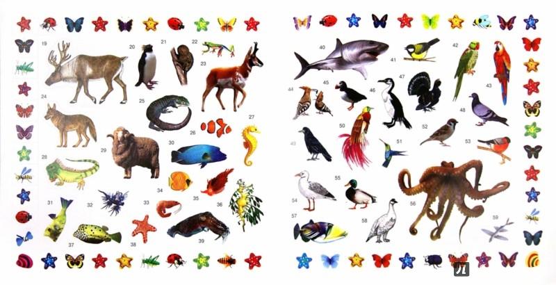 Иллюстрация 1 из 8 для Дикие животные | Лабиринт - книги. Источник: Лабиринт