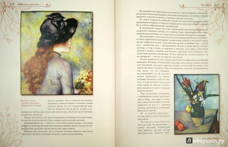 Иллюстрация 1 из 4 для Цветы в легендах и преданиях - Николай Золотницкий | Лабиринт - книги. Источник: Лабиринт