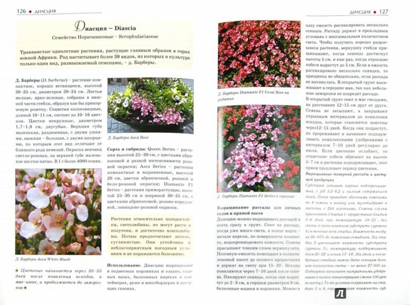 Иллюстрация 1 из 28 для Однолетние и многолетние декоративные растения. Иллюстрированный атлас - Дина Кудрявец | Лабиринт - книги. Источник: Лабиринт