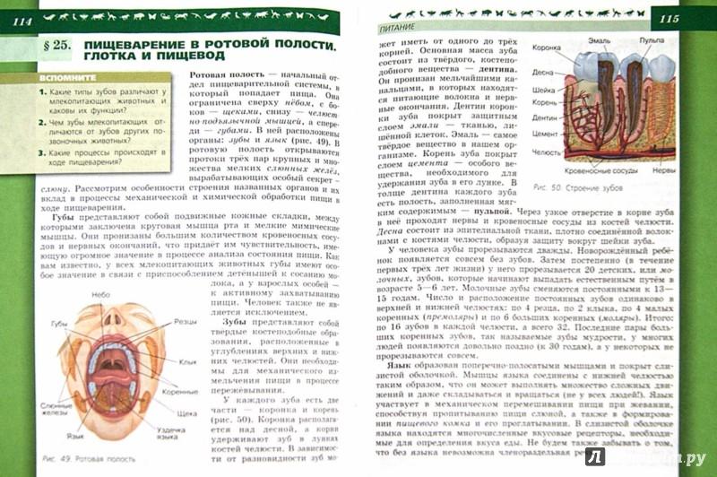 Гдз по биологии 8 класс учебник пасечник каменский швецов