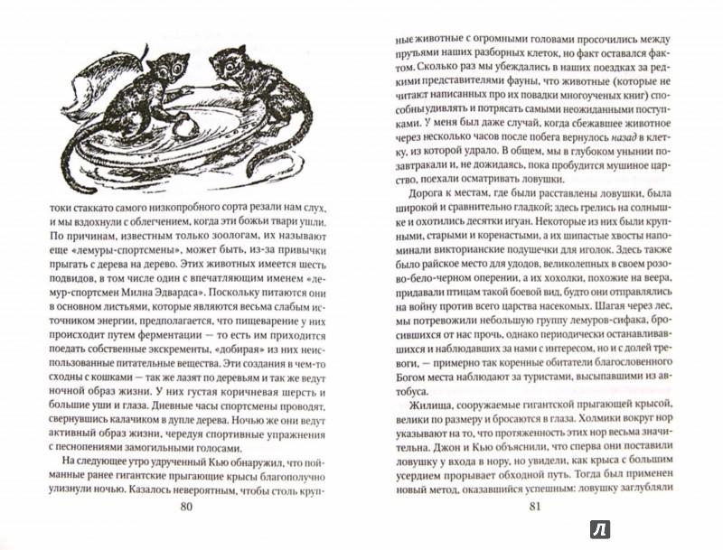 Иллюстрация 1 из 38 для Ай-ай и я - Джеральд Даррелл | Лабиринт - книги. Источник: Лабиринт