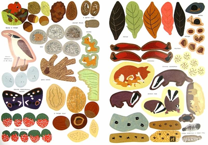 Иллюстрация 1 из 37 для Лесные жители - Оливия Косно | Лабиринт - книги. Источник: Лабиринт