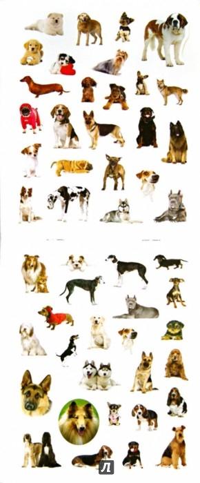 Иллюстрация 1 из 11 для 100 наклеек. Любимые собаки | Лабиринт - книги. Источник: Лабиринт