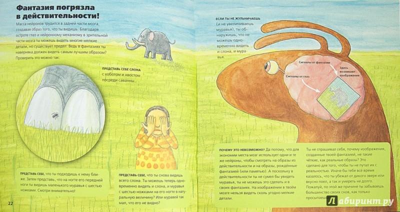Иллюстрация 1 из 21 для Всё о мозге для детей в рассказах и картинках - Юнатан Линдстрём | Лабиринт - книги. Источник: Лабиринт