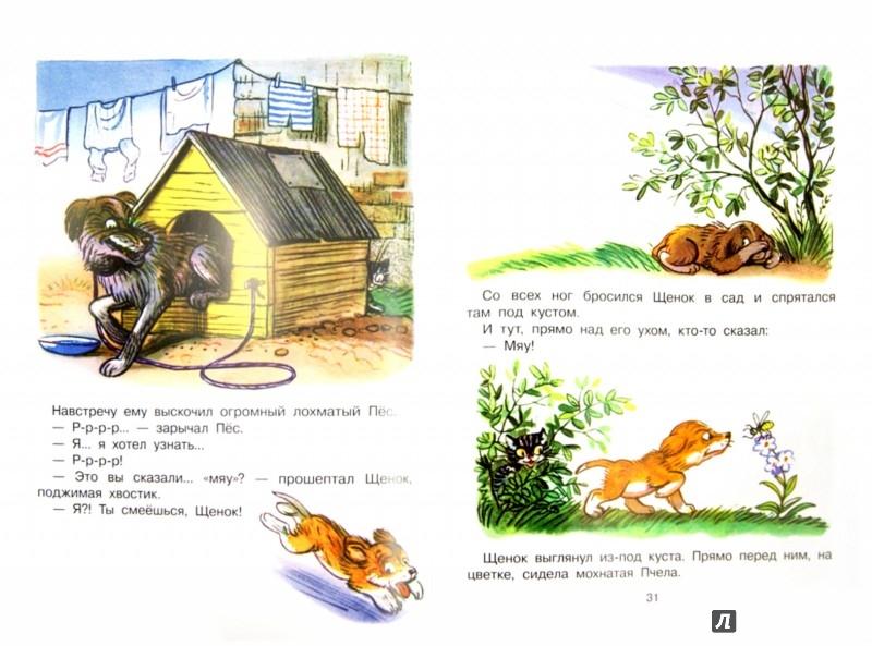 Иллюстрация 1 из 18 для Сказки и картинки - Владимир Сутеев   Лабиринт - книги. Источник: Лабиринт