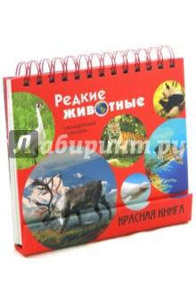 Редкие животные. Красная книга. Календарь 2015