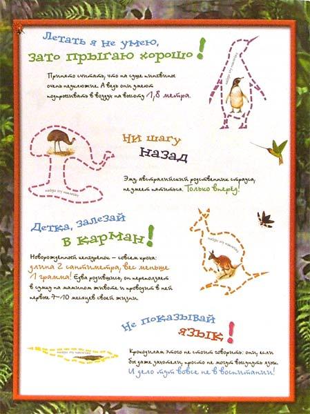 Иллюстрация 1 из 2 для Эти удивительные животные (зеленая) | Лабиринт - книги. Источник: Лабиринт