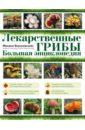 Лекарственные грибы. Большая энциклопедия, Вишневский Михаил Владимирович