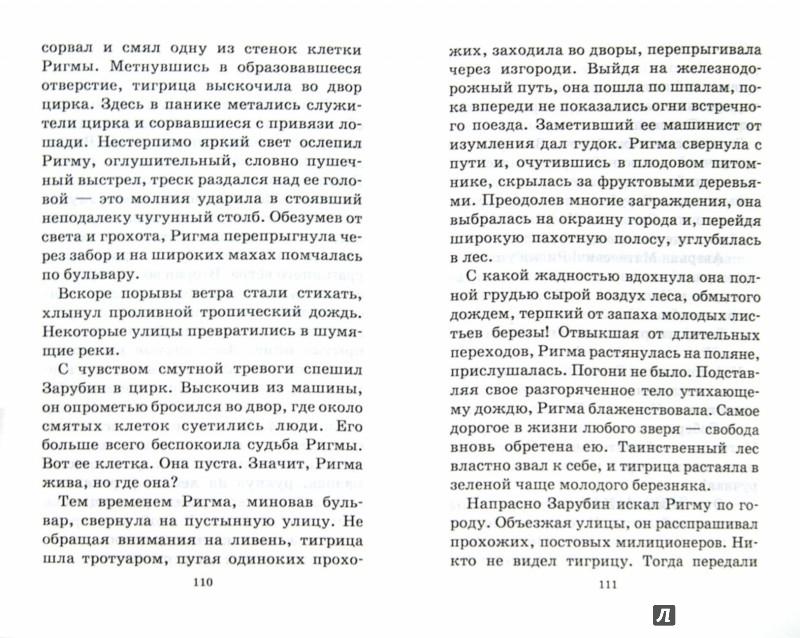 Иллюстрация 1 из 31 для Последний барс - Всеволод Сысоев   Лабиринт - книги. Источник: Лабиринт