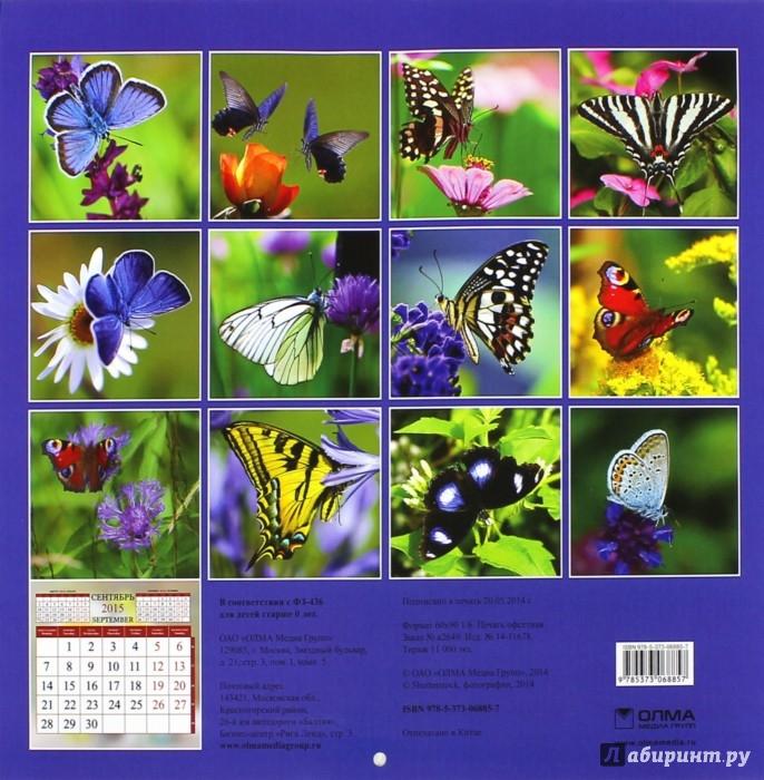 Иллюстрация 1 из 15 для Календарь 2015. Бабочки (12 листов) | Лабиринт - сувениры. Источник: Лабиринт